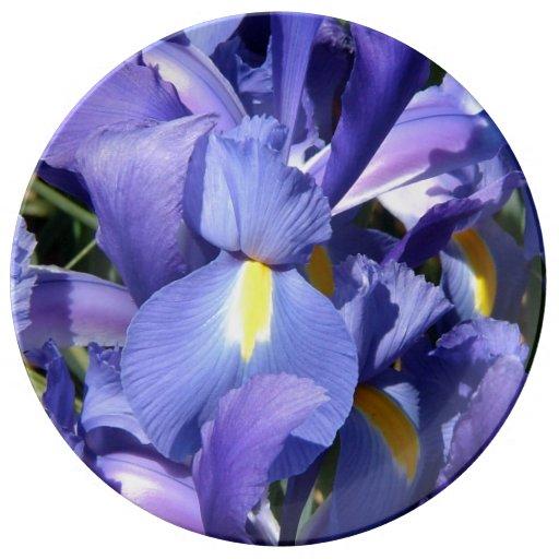 Iris néerlandais pourpre assiettes en porcelaine