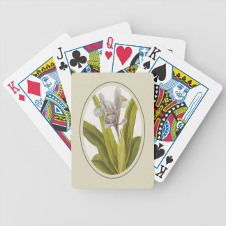 Iris Planifolia In Oval Mount Bicycle Playing Cards