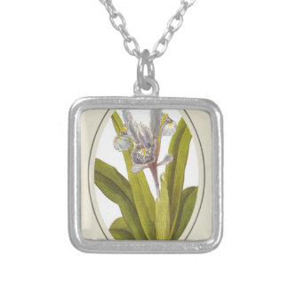 Iris Planifolia In Oval Mount Silver Plated Necklace