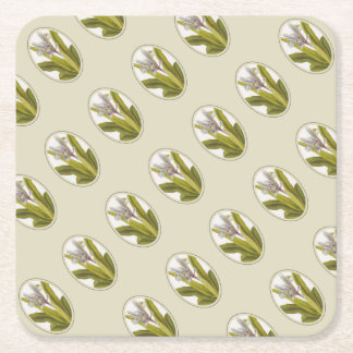 Iris Planifolia In Oval Mount Square Paper Coaster