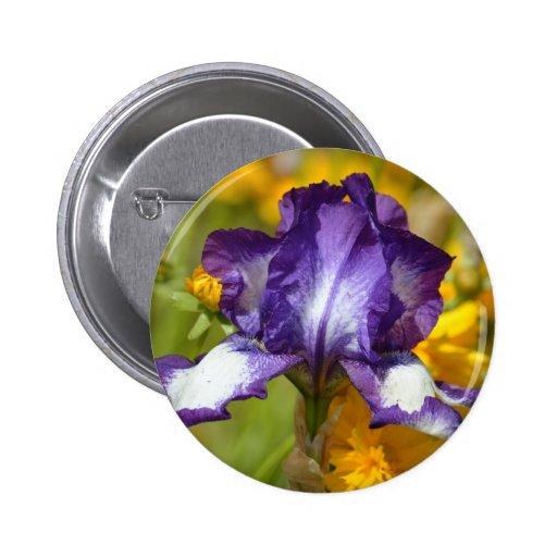 Iris pourpre badge