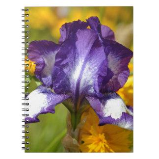 Iris pourpre carnets à spirale