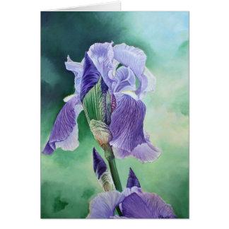 """Iris pourpre "" Carte De Vœux"