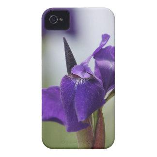 Iris pourpre coques Case-Mate iPhone 4