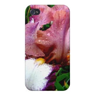 Iris pourpre coque iPhone 4/4S