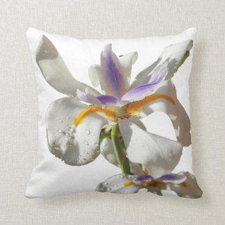 Iris pourpre et blanc coussin