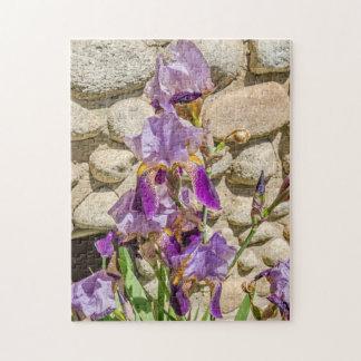 Iris pourpre ; Fleurs ; Ressort Puzzle