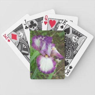 Iris pourpre jeu de cartes