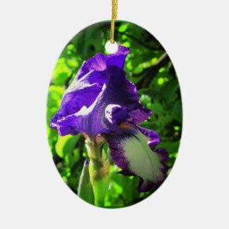 Iris pourpre ornement ovale en céramique