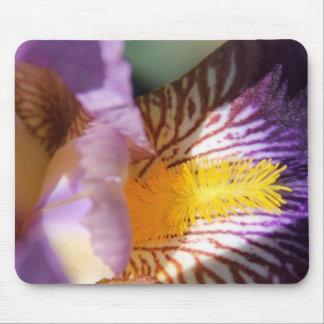 Iris pourpre sauvage Mousepad Tapis De Souris