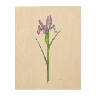Iris pourpre sur le panneau en bois impressions sur bois