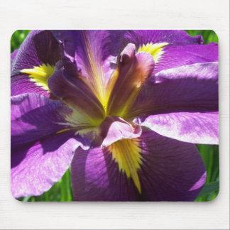 Iris pourpre tapis de souris