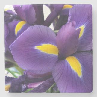 Iris pourpres et jaunes dessous-de-verre en pierre
