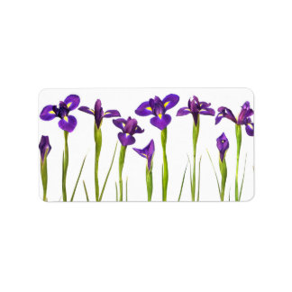 Iris pourpres - modèle customisé par fleur d'iris étiquette d'adresse