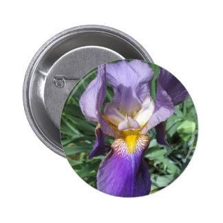 Iris Purple Bearded 2 Inch Round Button