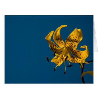 Iris repéré par jaune lumineux contre un ciel bleu carte de vœux