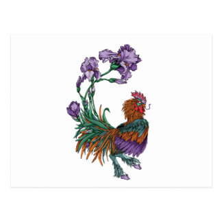 Iris Rooster Postcard