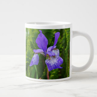 Iris sibirica large coffee mug