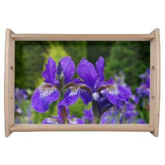 Iris sibirica serving tray