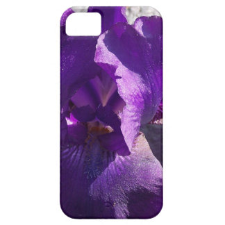 Iris Strength iPhone 5 Case