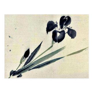 Iris? Ukiyo-e. Postcard