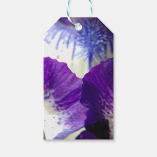 Iris Unfolding Gift Tags
