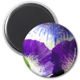 Iris Unfolding Magnet