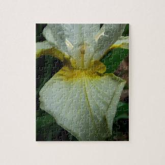Iris White Puzzles
