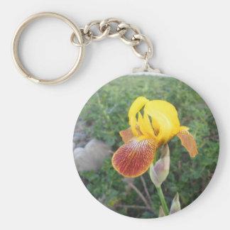 Iris Yellow Bearded Basic Round Button Keychain