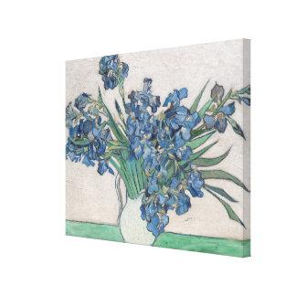 Irises, 1890 canvas print