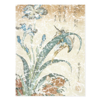 Irises and Kingfisher Postcard