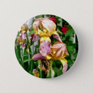 Irises By Picket Fence 2 Inch Round Button