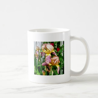 Irises By Picket Fence Coffee Mug