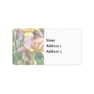 Irises By Picket Fence Label