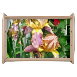 Irises By Picket Fence Serving Tray