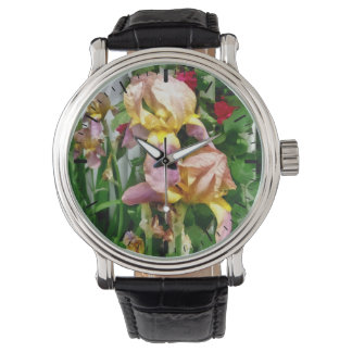 Irises By Picket Fence Watch