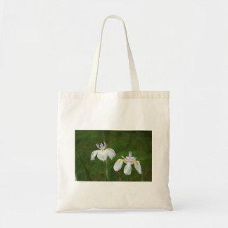 Irises in the Rain