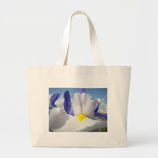 IRISES IRIS FLOWERS 15 Cards Art Gifts Stickers Bag