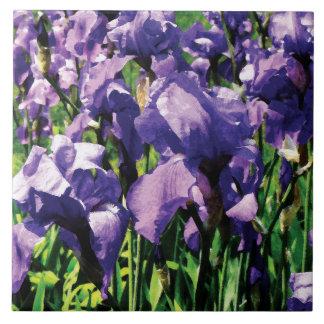 Irises Princess Royal Smith Tiles