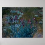 Irises & Water Lilies Print