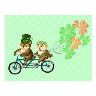 Irish bicyсle owls with clover baloons postcard