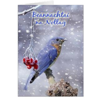 Irish - Blue Bird Christmas Greeting Card