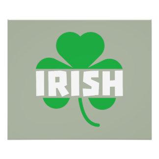 Irish cloverleaf shamrock Z2n9r Photo Print
