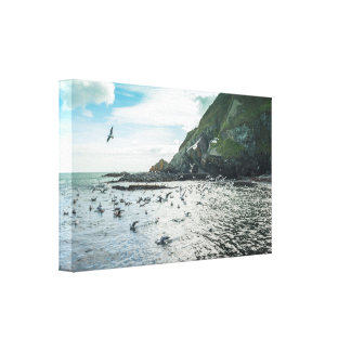 Irish coastline view canvas print