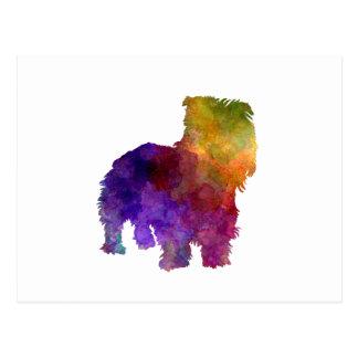 Irish Glen of Imaal Terrier in watercolor Postcard