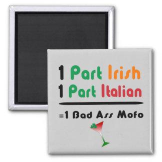 Irish Italian Funny Fridge Magnet