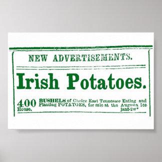 Irish Potato Newspaper Advertisement Civil War era Poster