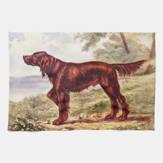 Irish Setter 1900 Illustration of Sporting Dog Kitchen Towel