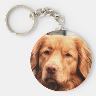 Irish Setter Basic Round Button Keychain