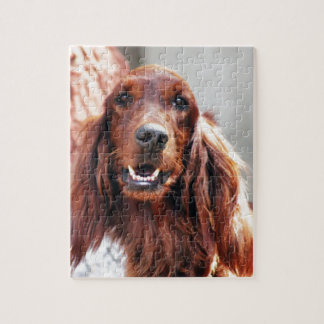 Irish Setter Dog Jigsaw Puzzle